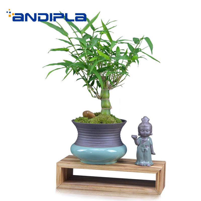 Creative Potted Plant / Ceramic Flower Pot with Cute Buddha Wood Base Kit / Home Decoration Crafts Bonsai Plant Holder VasesCreative Potted Plant / Ceramic Flower Pot with Cute Buddha Wood Base Kit / Home Decoration Crafts Bonsai Plant Holder Vases