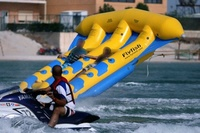 inflatable fly fish/inflatable water sports