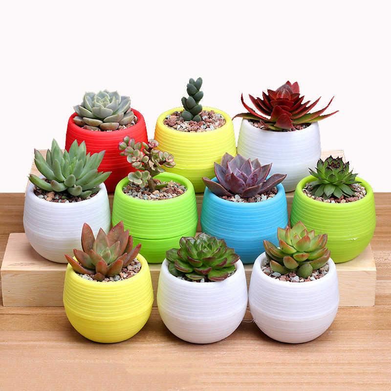 Mini Colorido Rodada Planta de Plástico Vaso de Flores Plantador de Jardim Home Office Decor Desktop Vasos de Flores para Casa e Decoração Do Escritório