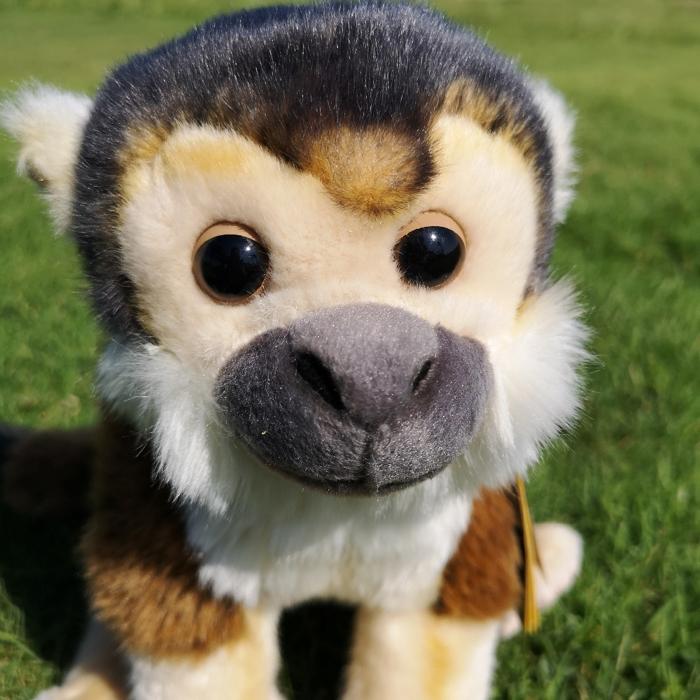 Col naso schiacciato MONKEY SCIMMIA Wildlife Giocattolo Modellino 100321 da Safari Ltd Nuovo di Zecca