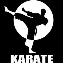 CK2202#15*19cm karate funny car sticker vinyl decal silver/black auto stickers for bumper window decorations