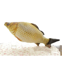 2016 New Child plush Toys 25cm / 40cm Spoof The Whole Person Carp Pillow Cartoon Doll Simulation Salted Fish Gift Free Door x190
