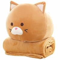 New Arrival Fat Cat Plush Pillow With Blanket Stuffed Cats Dolls Cute Anime Toys Hung Out Blanket Christmas Children Gifts
