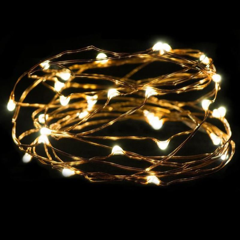 Warm White Light Plastic&Copper Thread Mini Light String 3 Meter 30 LED Silver Button Battery Mini Copper Wire Garland Lights