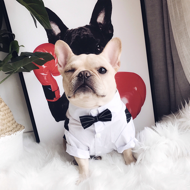 2018 New Pug Dog Clothes for Small Medium Dogs Chihuahua Clothing Striped Suit for French Bulldog with Bow Tie Dog Costume 2XL