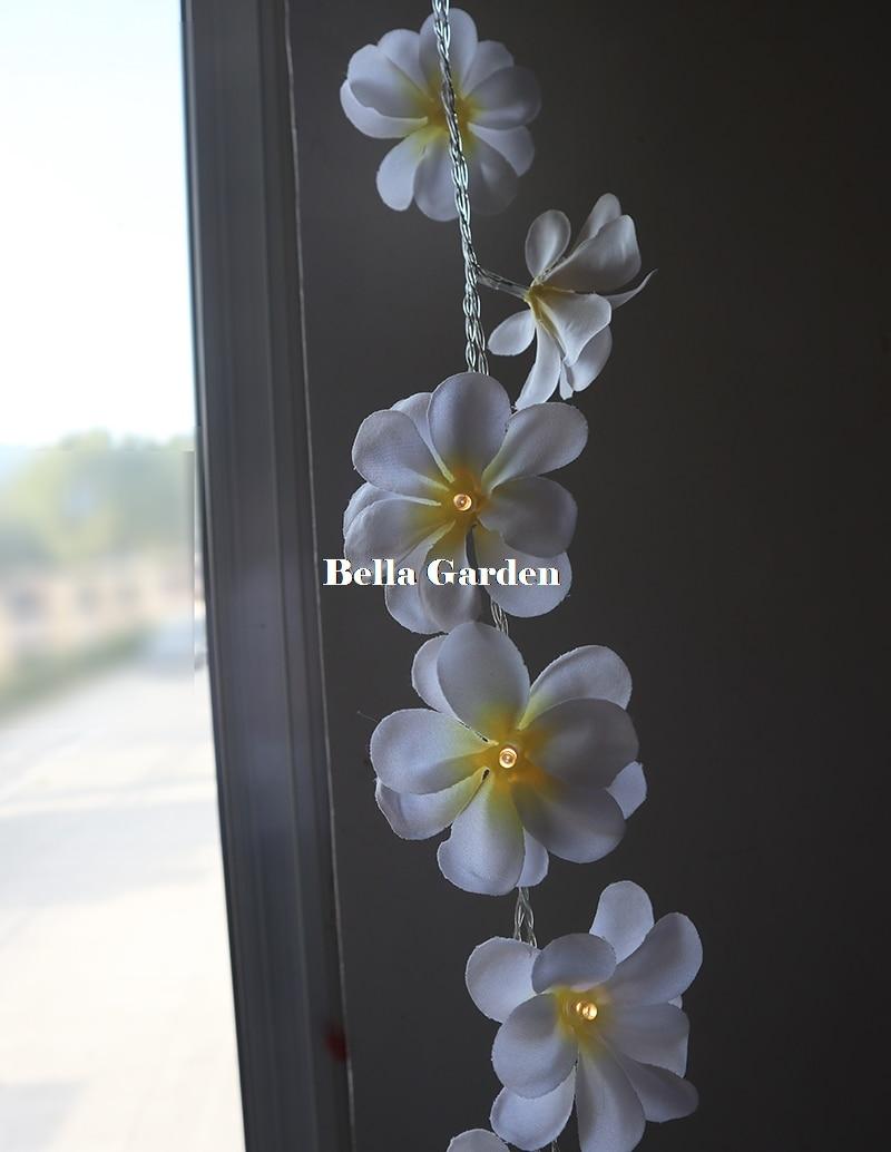 220V 5m 28led frangipani LED stīgas gaismas Akumulatora ziedu pasaku - Brīvdienu apgaismojums - Foto 6