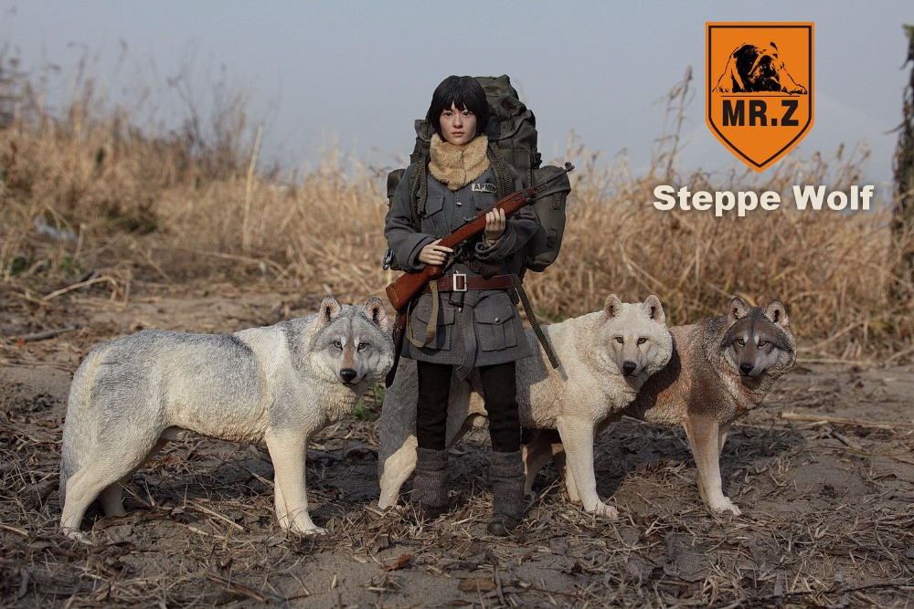 1:6 Scale Figure accessories steppe wolf for 12 Action figure doll Resin Animal model toy,not include doll and other 1 6 scale figure doll us america president donald trump with 2 headsculpts 12 action figure doll collectible model plastic toy
