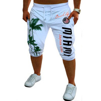 2017 Casual Men Shorts Beach Board Shorts Men Quick Drying Summer Polyester New Brand Clothing Boardshorts