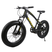 7 21 27 Speed 20 26 Inch Fat Bike Snow Bike 4 0Width Wheel High Ten