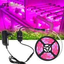 5 متر LED مصابيح فيتو شاشة ليد بطيف كامل تنمو ضوء 300 المصابيح 5050 قطاع LED Fitolampy تنمو أضواء ل الدفيئة النباتات المائية