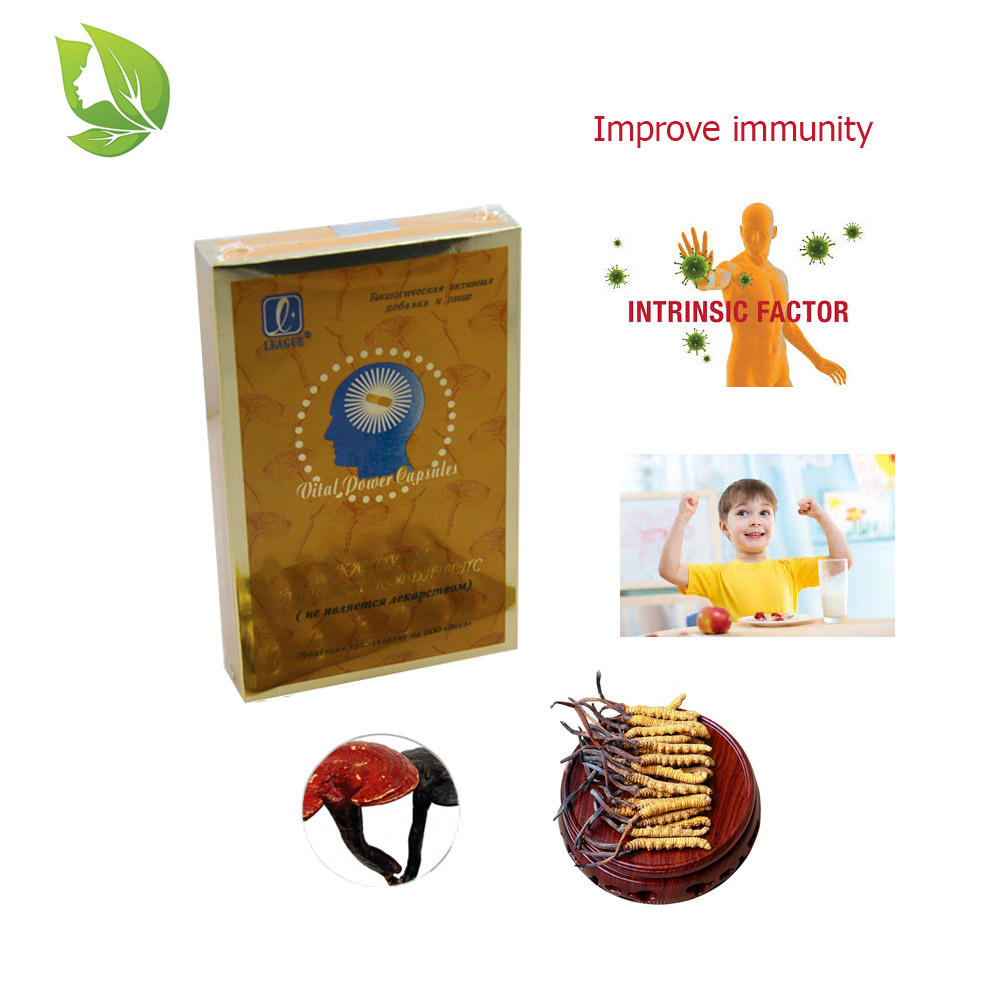 4 packs Wild Cordyceps Softgel Capsule Ganoderma Lucidum Extract Anti Fatigue Energy Enhancer Improve Intelligence Boost