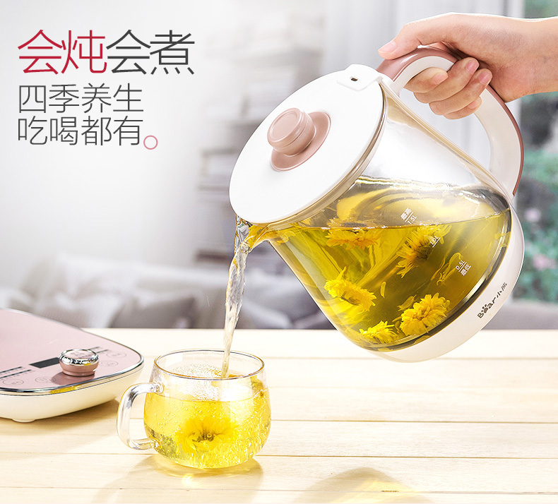 Health Pot Automatic Thickening Glass Multi-function Electric Kettle Teapot Home Tea Pot Health 10