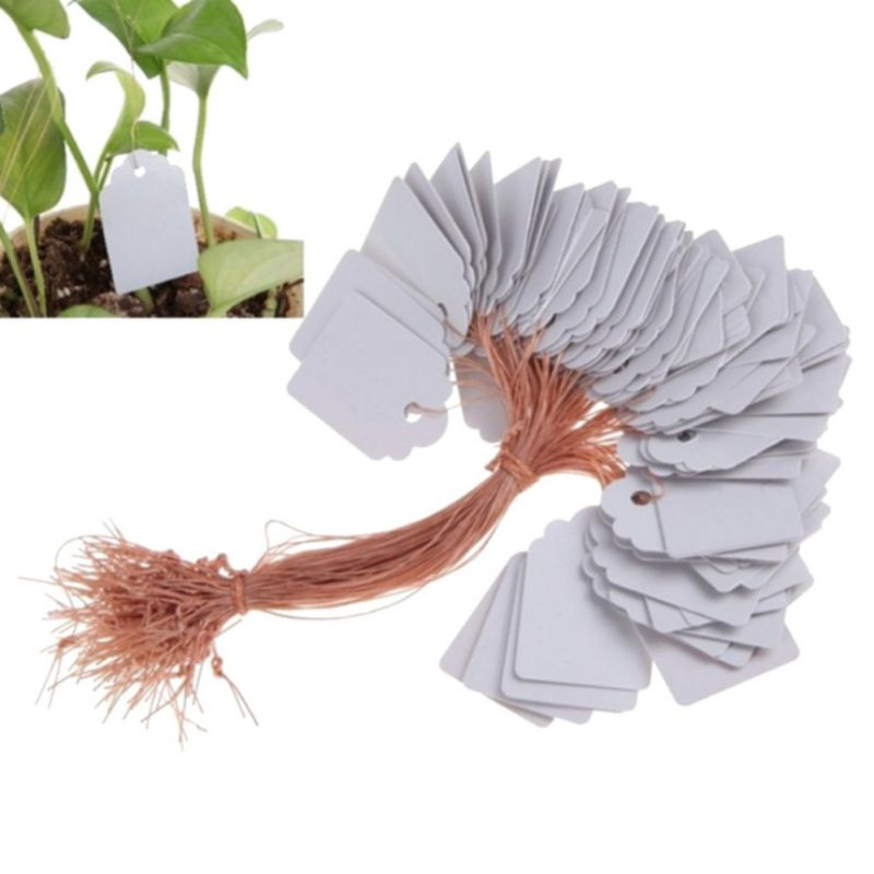 100Pcs Plants Labels Hang Tag WIth Rope Seedling Garden Flower Pot Garden Nursery Pots Planters Flower Thick Plant Label Marker