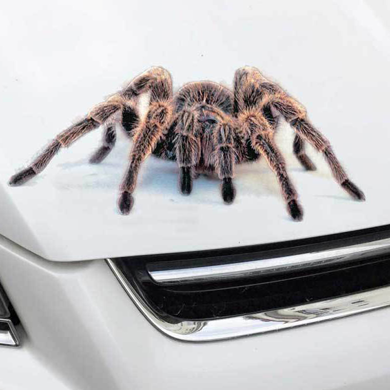 Image 2 - 3D Car Sticker Animals Bumper Spider Gecko Scorpions Car styling Abarth Vinyl Decal Sticker Cars Auto Motorcycle Accessories-in Car Stickers from Automobiles & Motorcycles