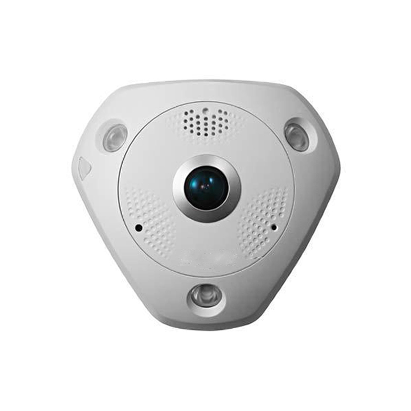 panoramic view 6MP fish-eye IP camera DS-2CD6362F-IS, Mult-language,Virtual PTZ,Bulit-in microphone and speaker language change and lexical variation in youth language