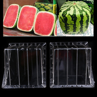 WHISM Big Size Clear Heart Square Growing Mold Watermelon Transparent Fruit Growth Forming Shaping Mold Garden Supplier