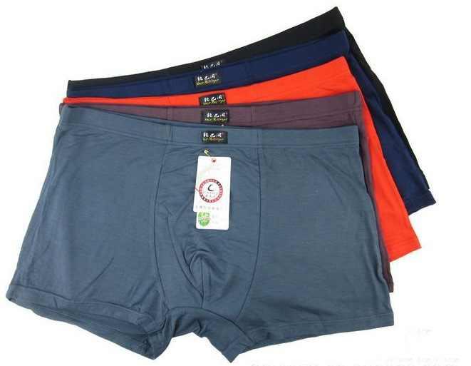 Plus 4-6XL Underwear Mens Bamboo Fiber Boxer Brief Shorts Thongs Trunk Underpant