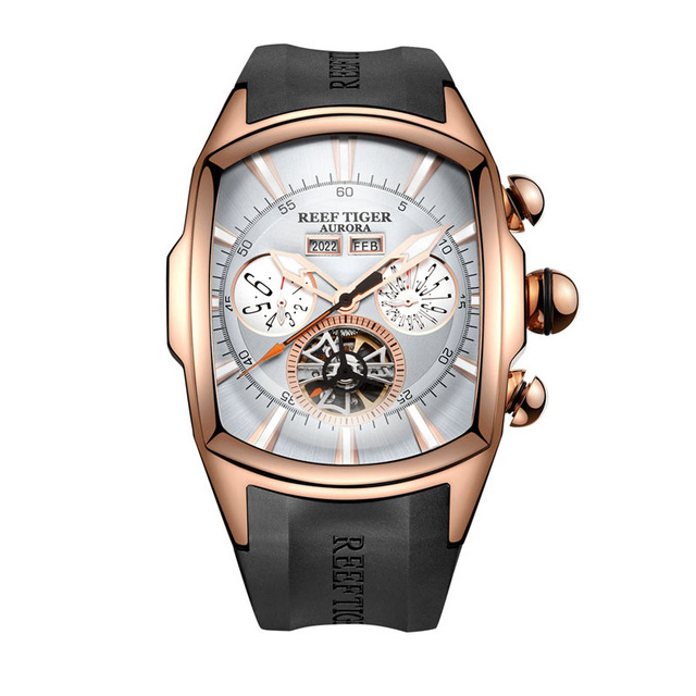 Reef Tiger Aurora Serier RGA3069 Men Fashion Multifunction Concept Dial Automatic Mechanical Wrist Watch With Luminous Analog 機械 式 腕時計 スケルトン