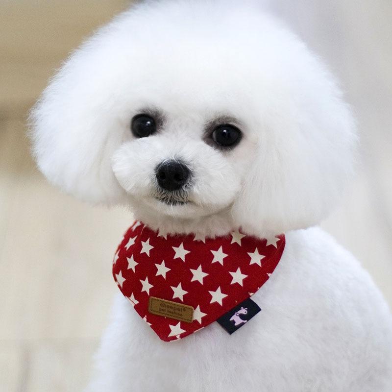 Pet Products Cat Dog Supplies Aksesuāri Zvaigznes Drukāt - Mājdzīvnieku produkti - Foto 2