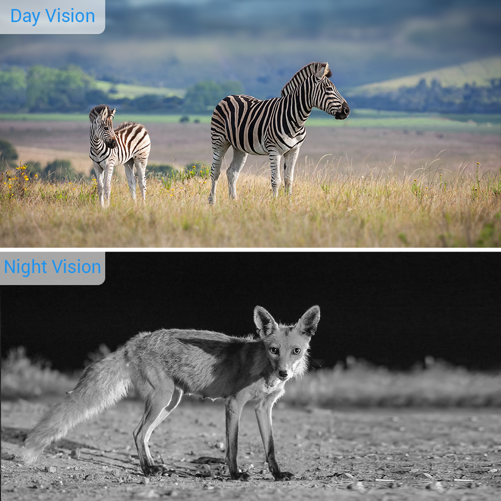 Image 3 - BOBLOV Hunting Trail Camera Night Version Wild Cameras 16MP 1080P IP65 Photo Trap 0.3s Trigger Wildlife Camera Surveillance-in Hunting Cameras from Sports & Entertainment