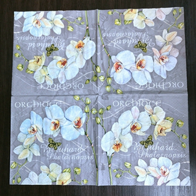4 Paper Napkins for Decoupage 4 Individual Napkins for Craft and Napkin Art. Flower Girl 3-ply 33 x 33cm