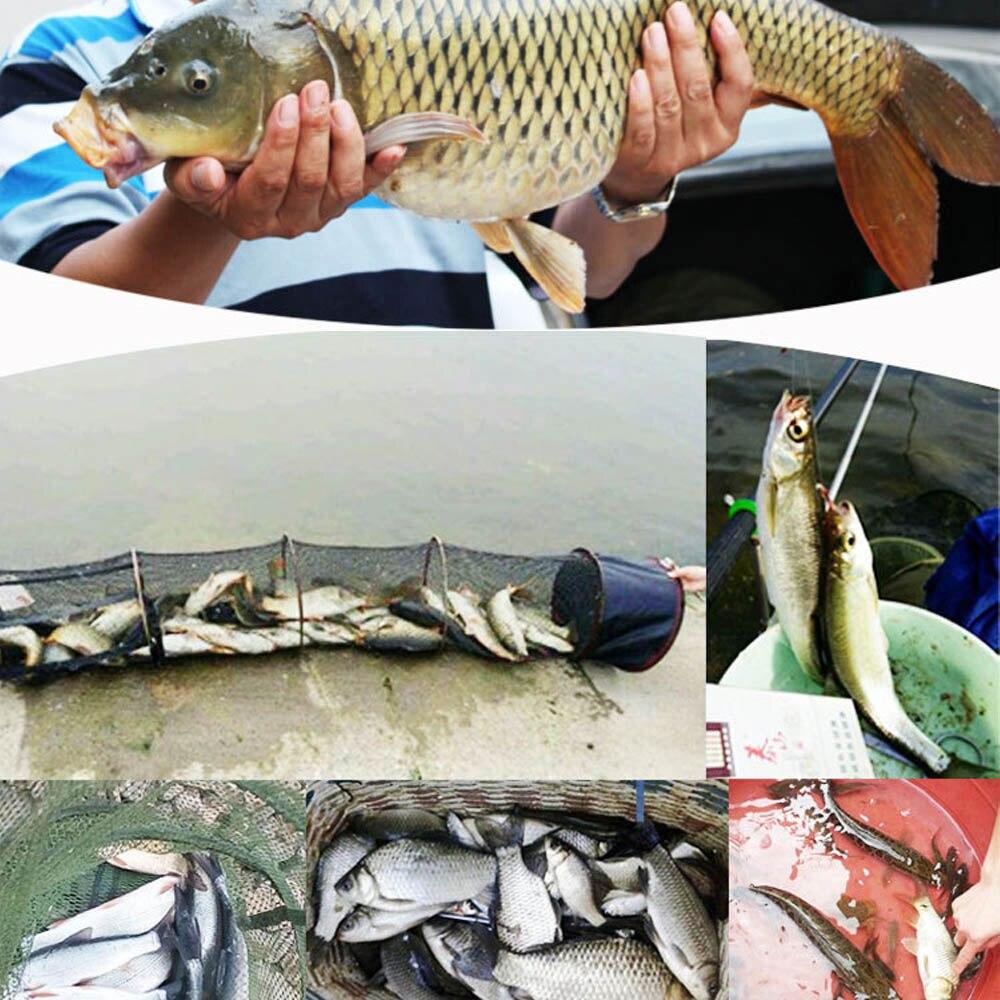 Carp Fishing Jelly Bait 70g 450Pcs Bottle Fish Pellet Fisher Beads Beans Baits
