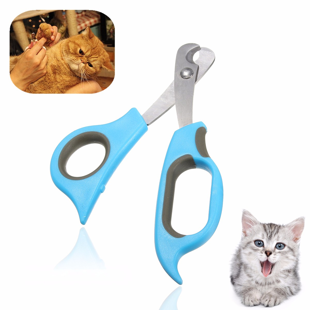 Kitten Doggy Grooming Scissors Cat Dog Claw Nail Clippers Pet Animals Rabbit Claw Toe Stainless Steel Cat Grooming Supplies