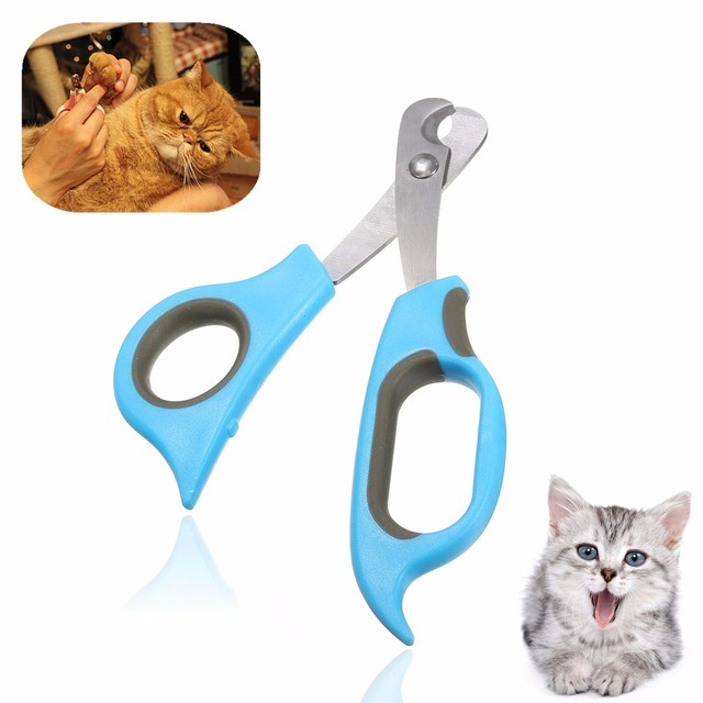 Scissors for Nail Cats