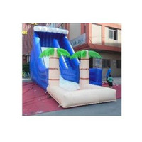 Commercial PVC Water Slide Inflatable Model inflatable water slide with a funny pool