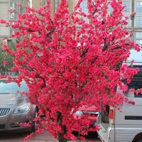 10-pcs-red-japanese-cherry-blossoms-seeds-courtyard-garden-bonsai-tree-seeds-small-sakura-tree-seeds-mixed-colors