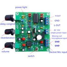 ETK3699 цифровой Kara OK Surround Reverb задержка микрофон усилитель Preamp Board