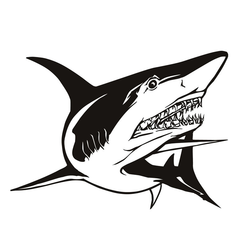 Most Popular Home Decor Truculent Great White Shark Wall