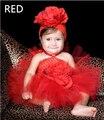 Младенческая Baby Girl одежда Пачка Princess Dress с Цветок Оголовье/Девочка одежда Фото День Рождения Летом Платья 0-24 Месяцев