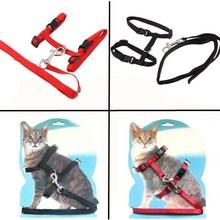New Nylon Pet Cat Kitten Adjustable Harness Lead Leash Collar Belt Safety Rope