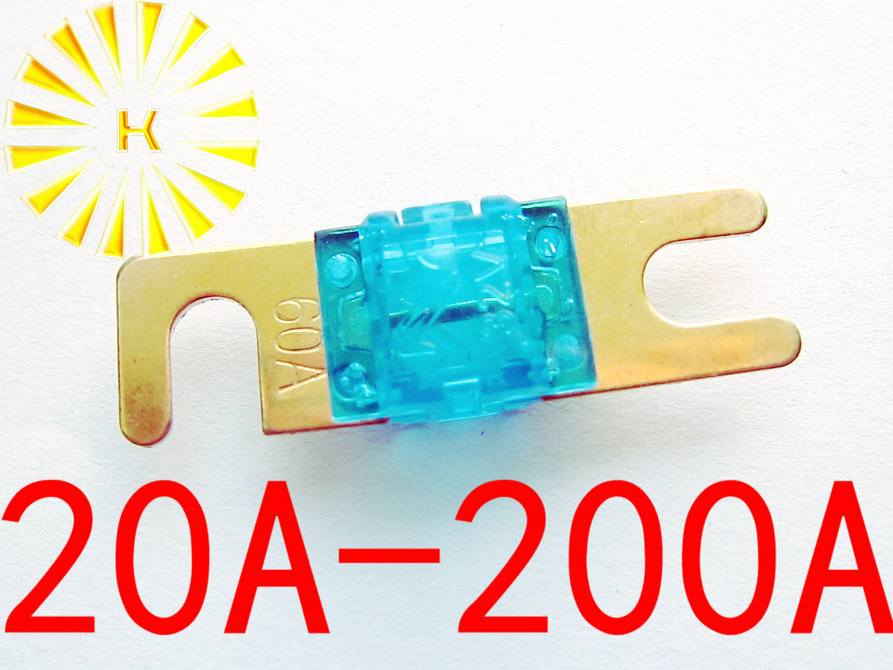 20A 30A 40A 60A 80A 100A 125A 150A 175A 200A 32V Mini Car Stereo Audio ANL