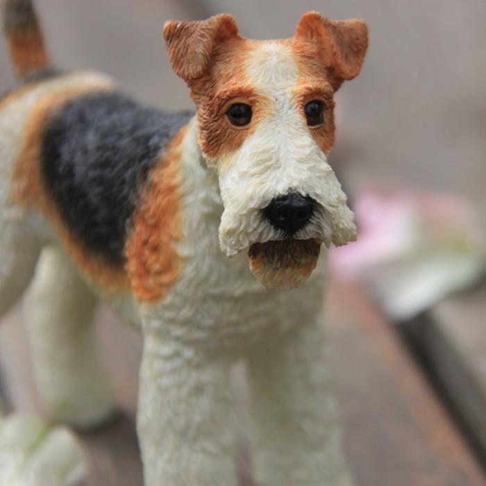 Graden dog price in bangalore dating 10