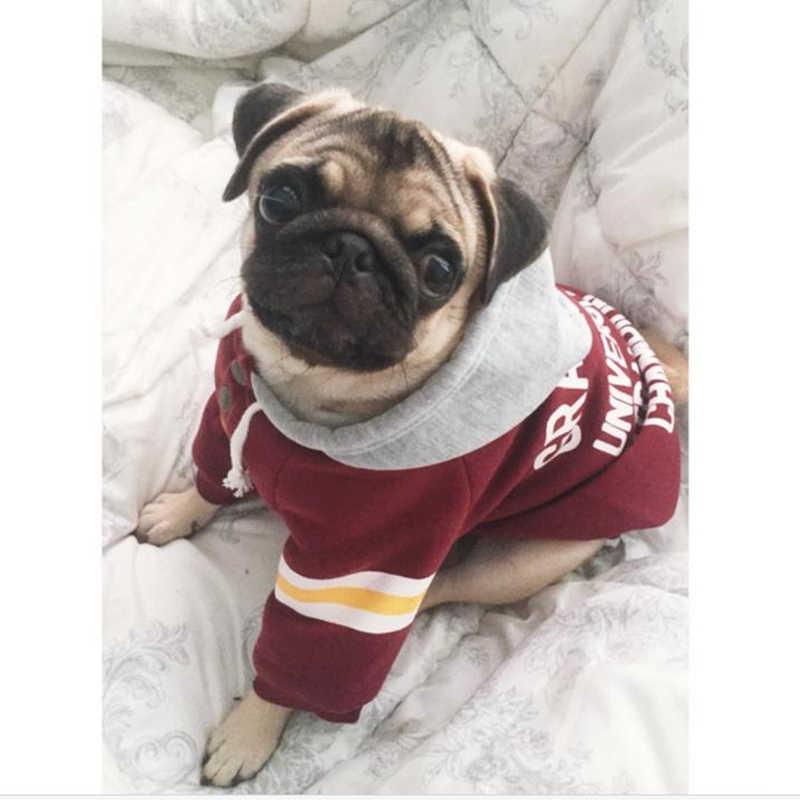 Sweat-shirt à capuche pour petits chiens | Vêtements pour chiens, pour petits chiens, français, joli, Cool, T-Shirt