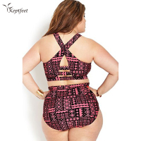 2017 New Bikinis High Waist Swimsuit Women Plus Size Racerback Swimwear Print Vintage Retro Plaid Beach