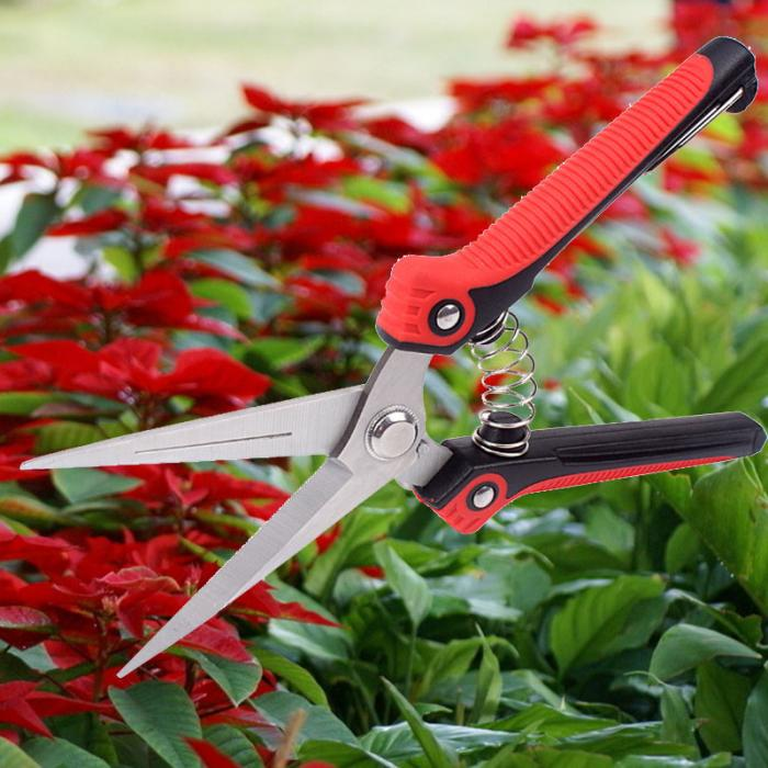Durable Gardening Scissors for Cutting Stems and light Branches made of Stainless Steel 13