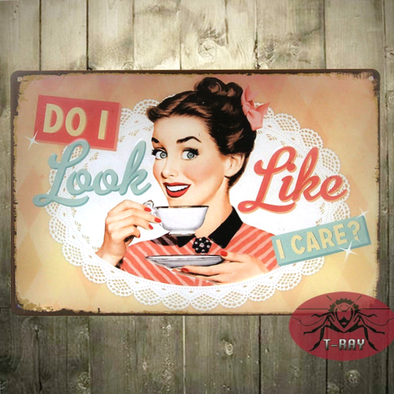 Do i look like I care? Vintage home decor Art wall decor Iron Painting Plaque H-02