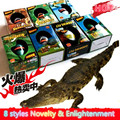 Gift Box Hatching Inflatable Animals Growing Pet Dinosaur Turtle Lizard Swelling Eggs Toys Christmas gift