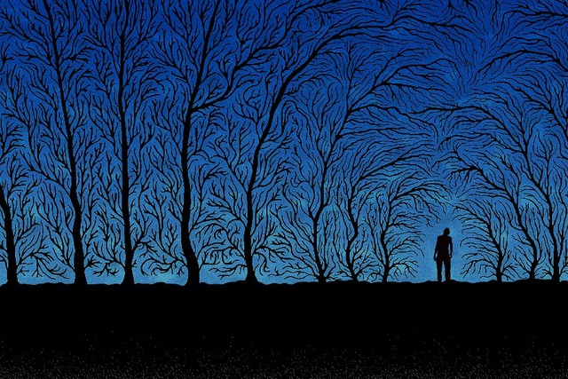 Image result for tree with shadow art