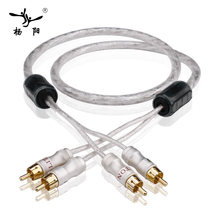 YYAUDIO Liton посеребренный двойной фильтр кольцо лихорадка аудио сигнала кабельной линии RCA plug Аудио кабель Бесплатная доставка 1 м 1,5 м 2 м 3 м 0,5