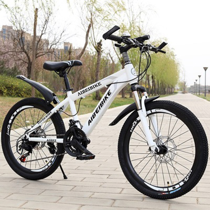 Student Adult Bicycle 24-Speed Two-Disc Brake Shock Absorber 22-Inch Mountain Bike