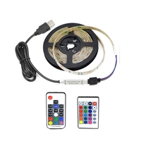 3528 USB LED Strip Light 5V Color Changing String Tape Ribbon Waterproof White/ Warm 1M 2M 3M 4M 5M RGB RF Or IR Controller DIY LED Strips