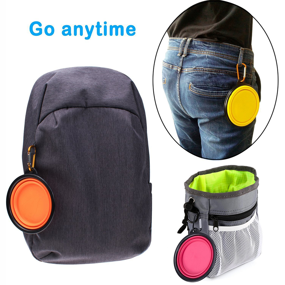 Collapsible Portable Outdoor Travel Pet
