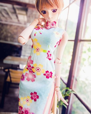 ФОТО 1/4 1/3  SD BJD DD entity doll 65cm china dress