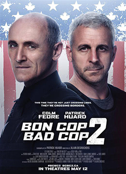 《好警察坏警察2》2017年加拿大喜剧,动作,犯罪电影在线观看