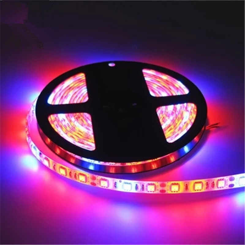 5M/lot LED Grow Lights DC12V Growing LED Strip Tape Light 5050 IP65 IP20 LED Plant Growth Lamps for Greenhouse Hydroponic plant