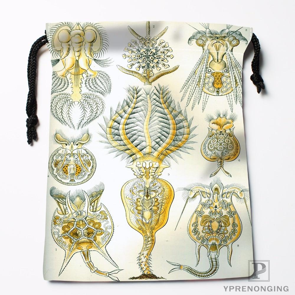 Custom Haeckel Narcomedusae Drawstring Bags Travel Storage Mini Pouch Swim Hiking Toy Bag Size 18x22cm#0412-04-25